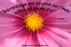 Proverbe 13 petit