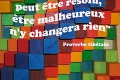 Proverbe 56 petit